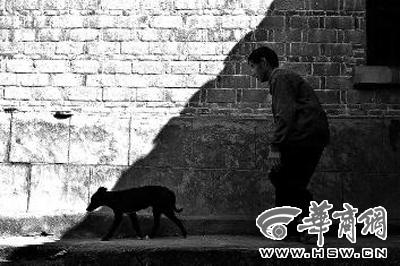 小狗小黑整天陪伴在钟兆武身边