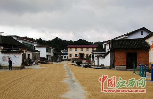 2008年,天宝古村被评为中国历史文化名村