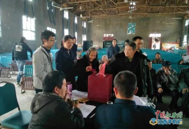 三清山枫林办村两委换届选举工作全面有序展开