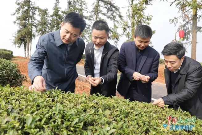 上饶市市委书记马承祖在上饶县调研